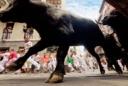 bulls spain